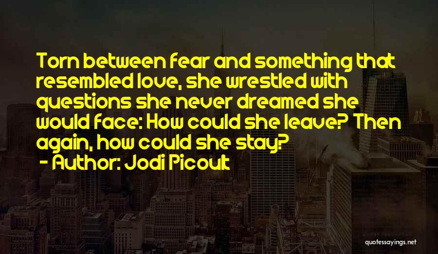 Love Questions Quotes By Jodi Picoult