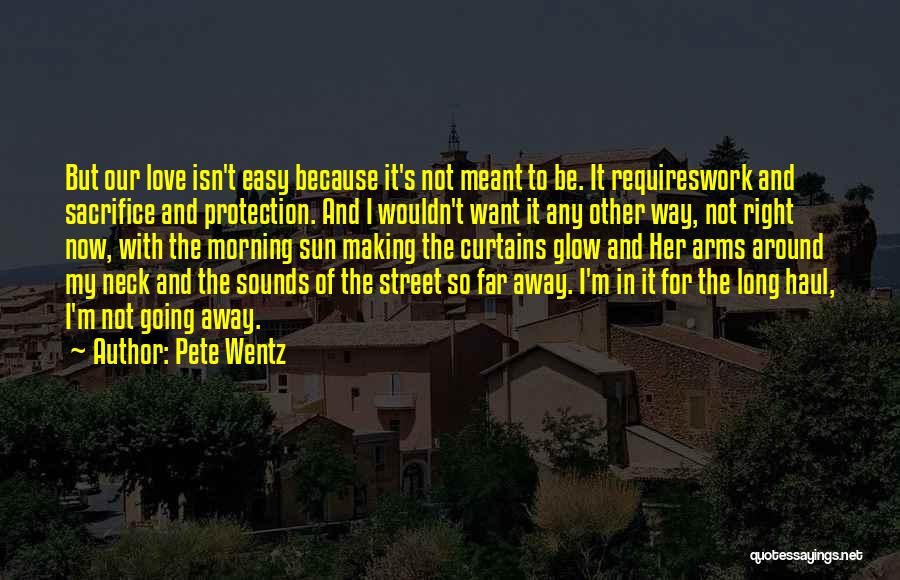 Love Requires Work Quotes By Pete Wentz