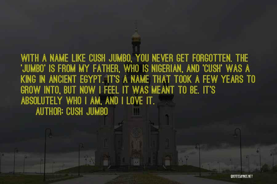 Love That Was Meant To Be Quotes By Cush Jumbo