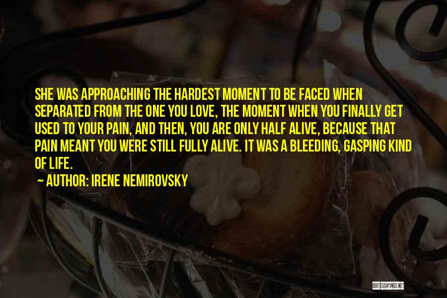 Love That Was Meant To Be Quotes By Irene Nemirovsky