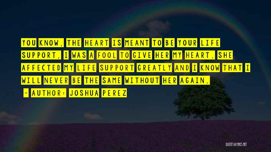 Love That Was Meant To Be Quotes By Joshua Perez