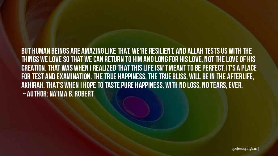 Love That Was Meant To Be Quotes By Na'ima B. Robert