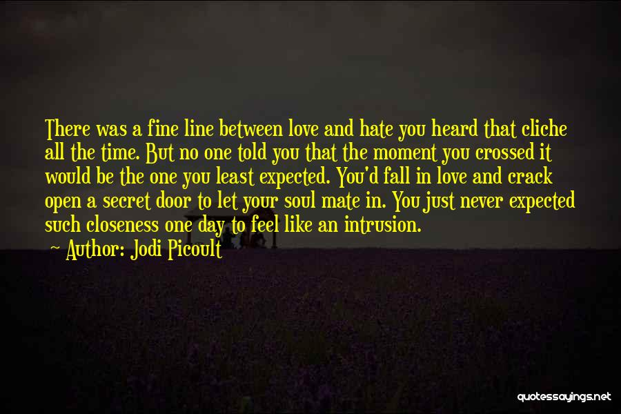 Love You But Hate You Quotes By Jodi Picoult