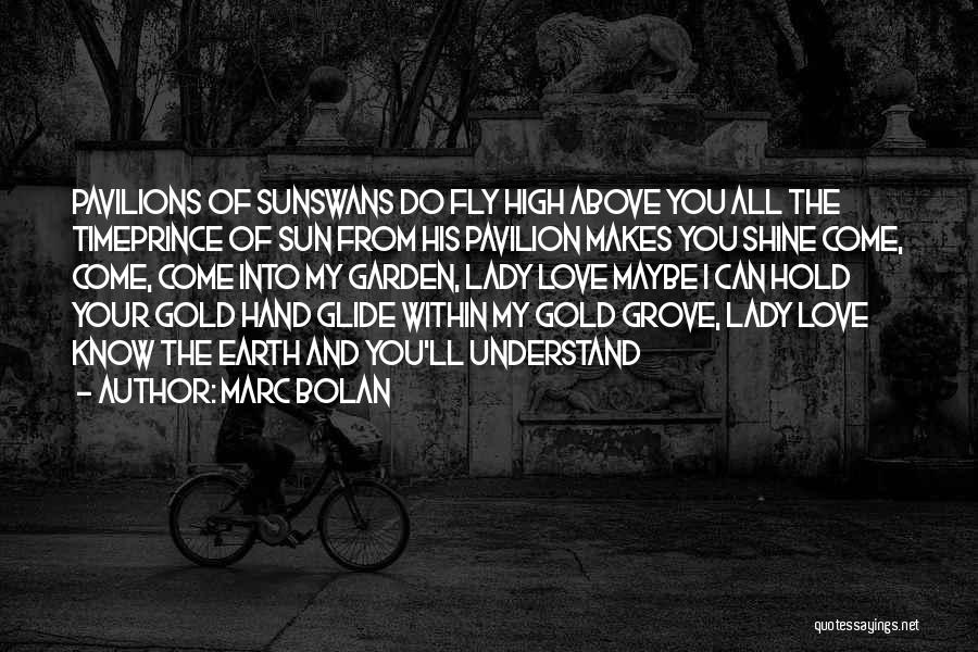 Love You My Lady Quotes By Marc Bolan