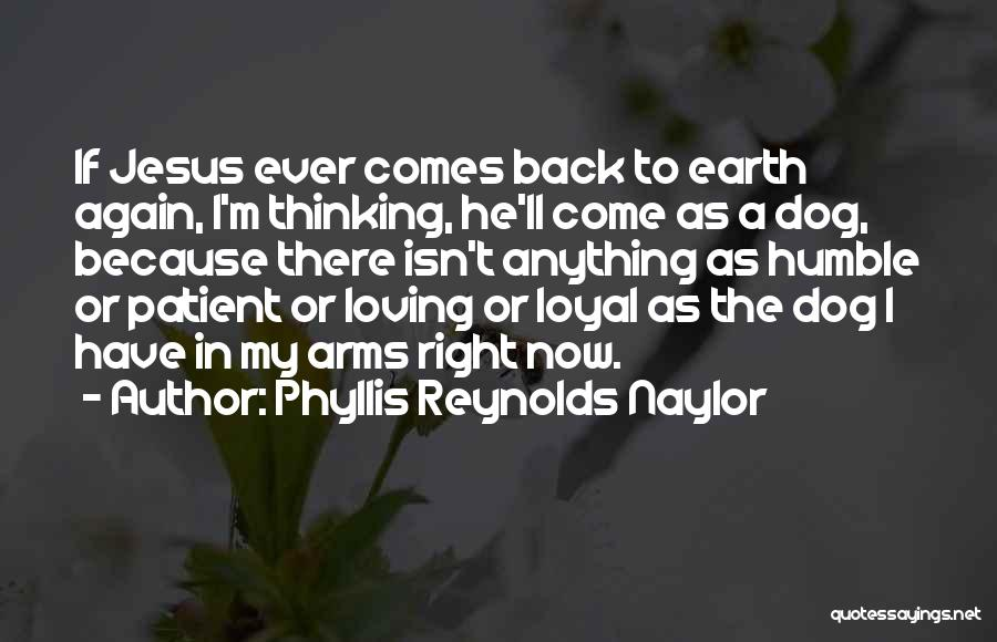Loving Jesus Quotes By Phyllis Reynolds Naylor