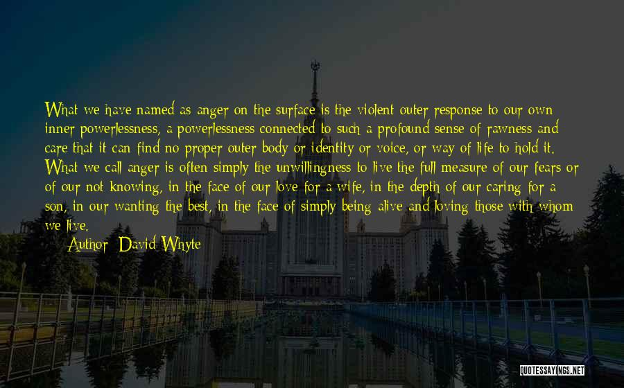 Loving Life As It Is Quotes By David Whyte