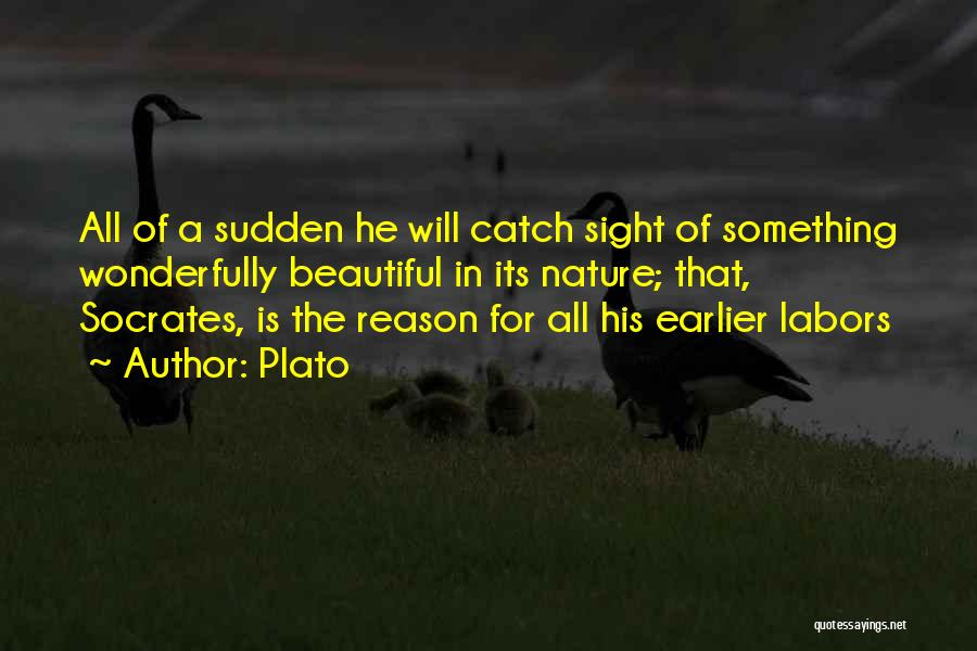 Loving Nature Quotes By Plato