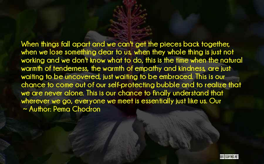 Loving Someone You Don't Know Quotes By Pema Chodron