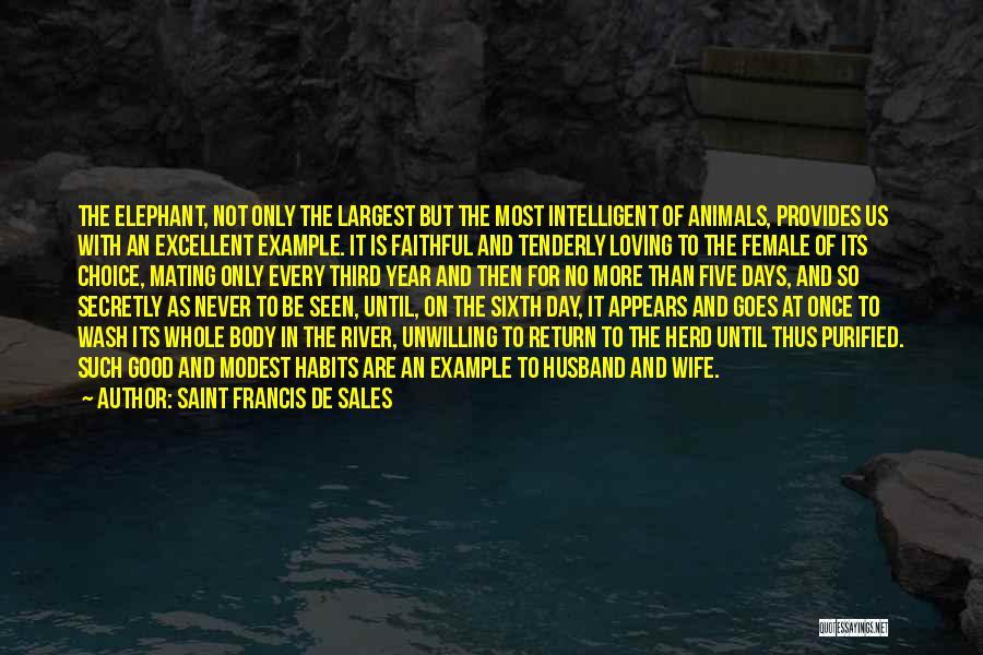 Loving Your Husband Quotes By Saint Francis De Sales