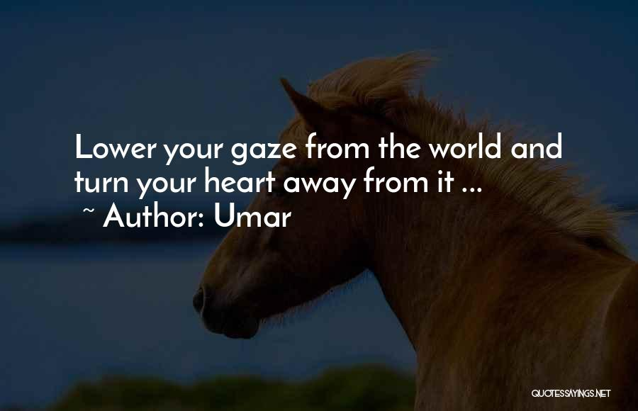 Lower Your Gaze Quotes By Umar