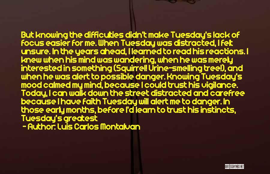 Luis Carlos Montalvan Quotes 1446759