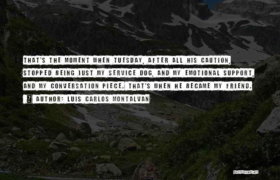 Luis Carlos Montalvan Quotes 1834950