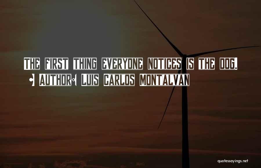 Luis Carlos Montalvan Quotes 1915802