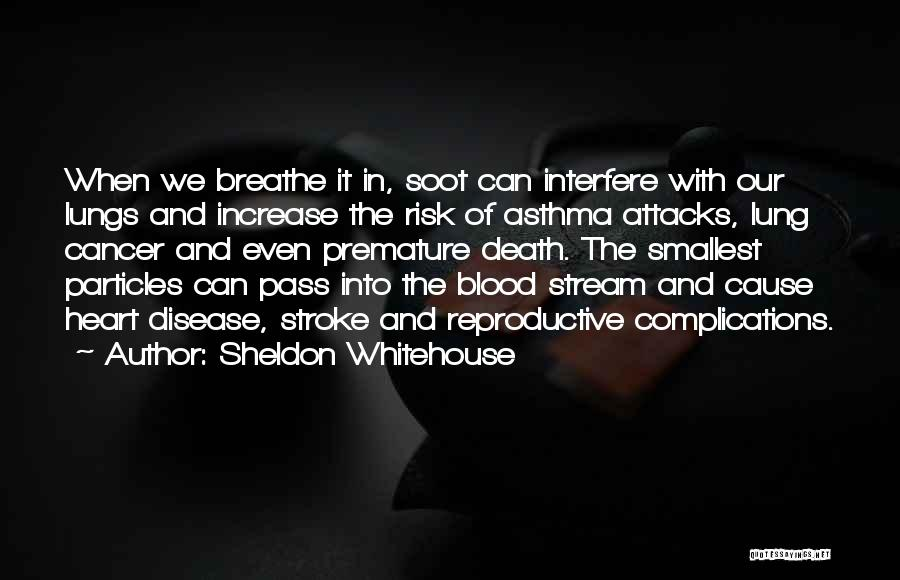 Lung Cancer Quotes By Sheldon Whitehouse