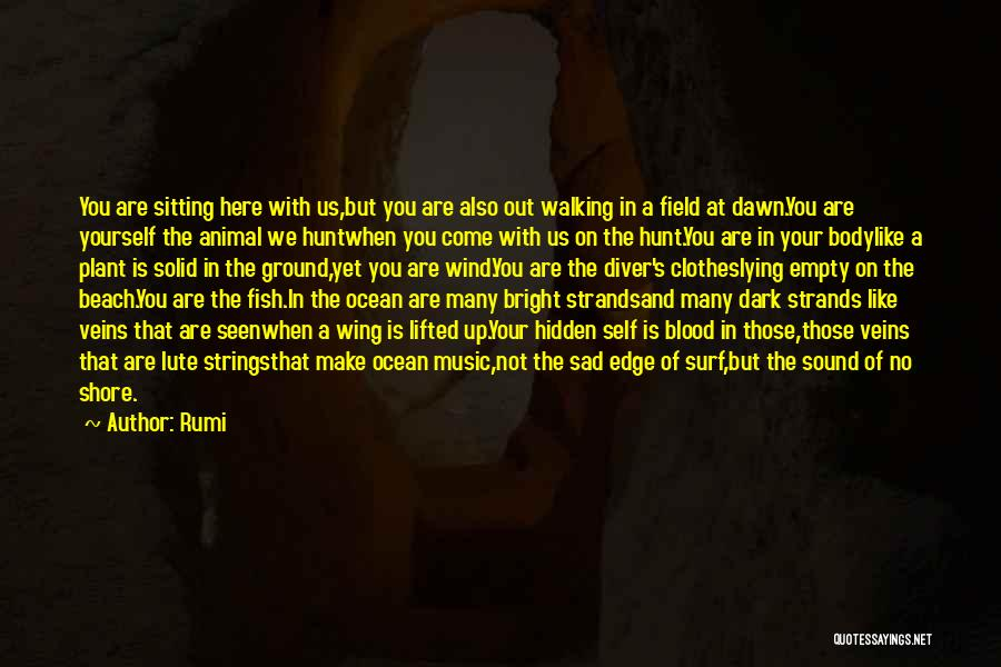 Lute Quotes By Rumi
