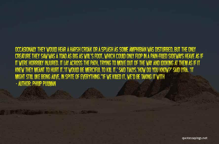 M Hurt Quotes By Philip Pullman