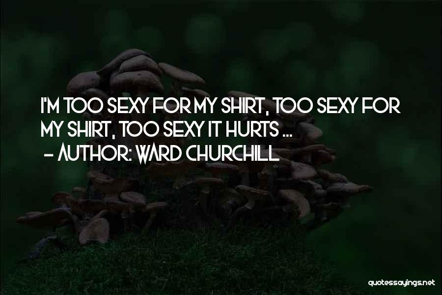 M Hurt Quotes By Ward Churchill