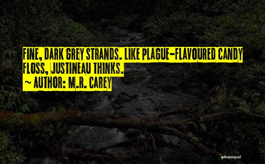 M&m Candy Quotes By M.R. Carey