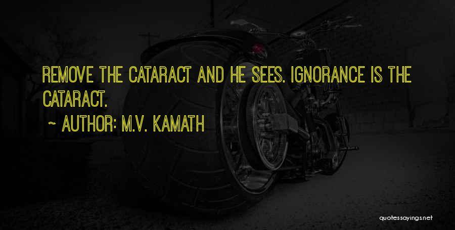 M.V. Kamath Quotes 2147486