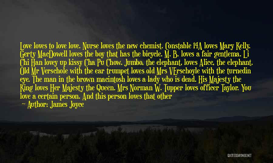 Macintosh Quotes By James Joyce