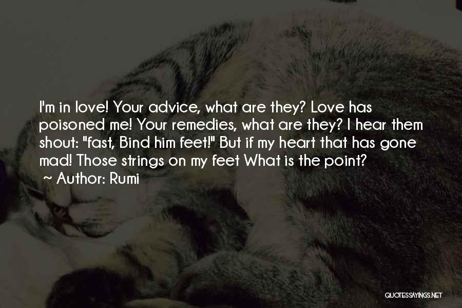 Mad In Your Love Quotes By Rumi