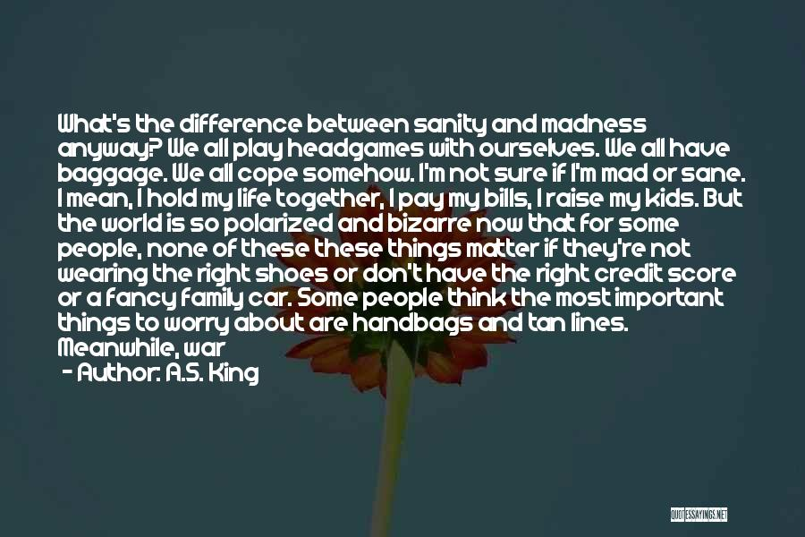 Madness And Sanity Quotes By A.S. King