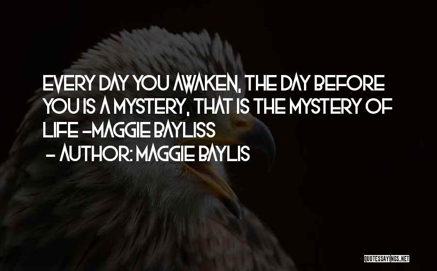 Maggie Baylis Quotes 2034080