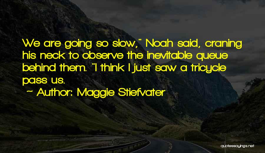 Maggie Stiefvater Quotes 274668