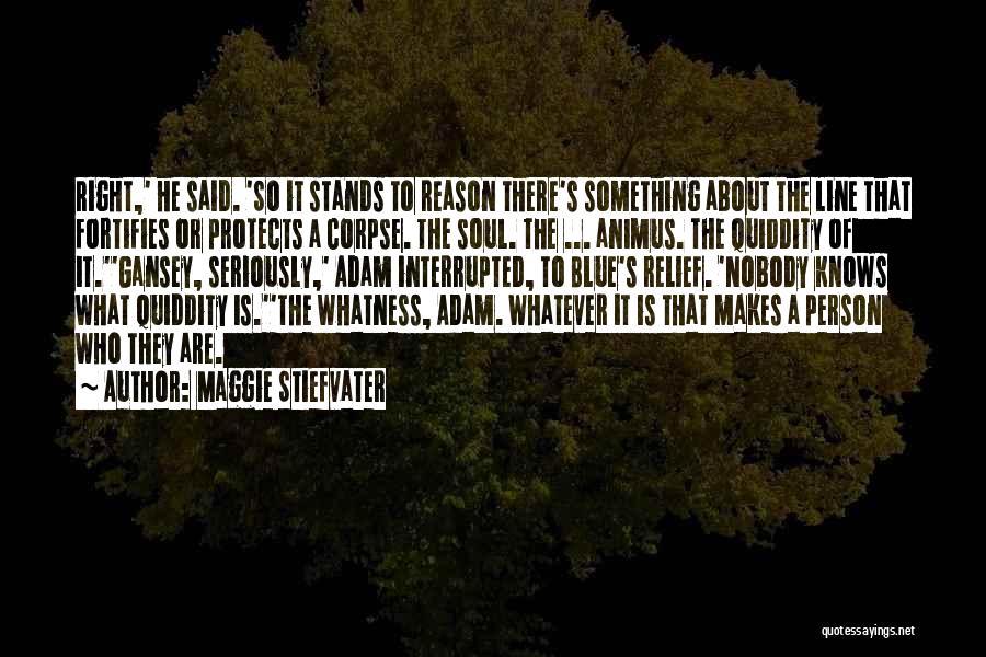 Maggie Stiefvater Quotes 850919