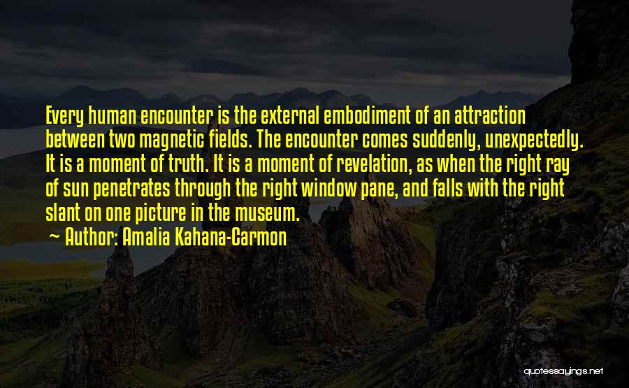 Magnetic Attraction Quotes By Amalia Kahana-Carmon
