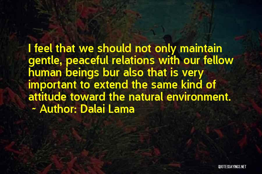 Maintain Attitude Quotes By Dalai Lama