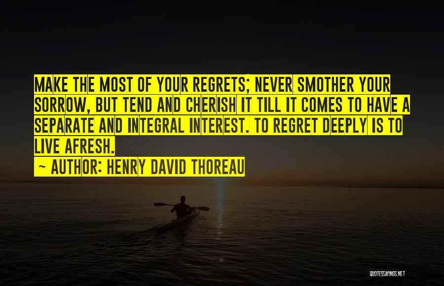 Make Him Regret Quotes By Henry David Thoreau