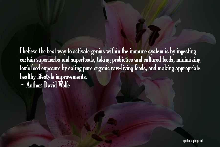 Making Improvements Quotes By David Wolfe