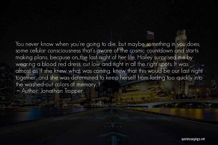 Making Plans In Life Quotes By Jonathan Tropper