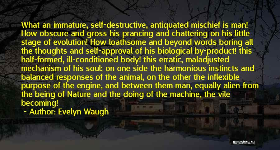 Maladjusted Quotes By Evelyn Waugh