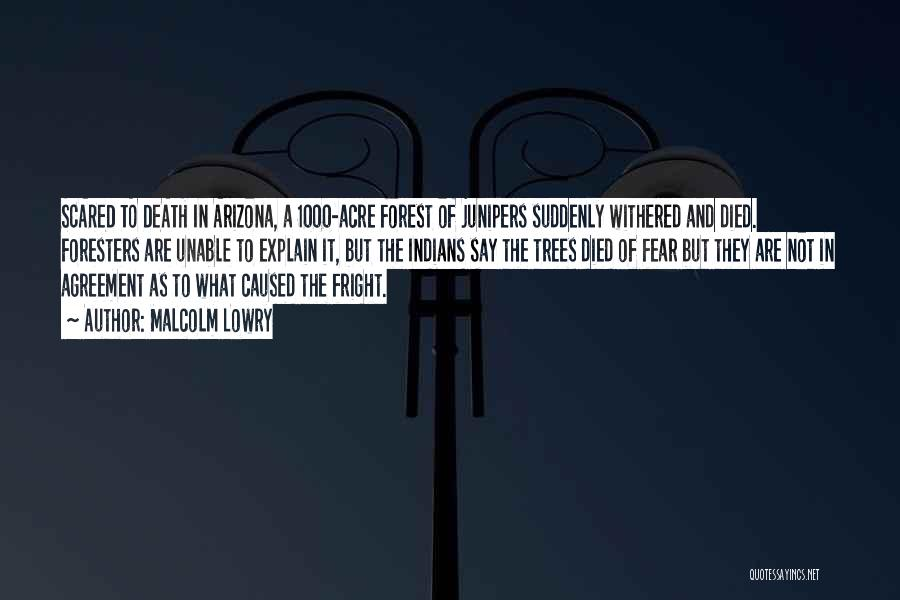 Malcolm Lowry Quotes 1126041