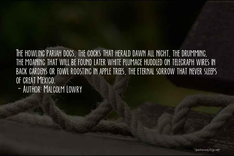 Malcolm Lowry Quotes 909675