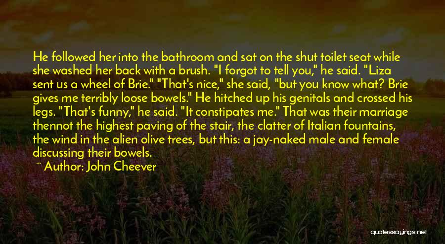 Male Female Funny Quotes By John Cheever