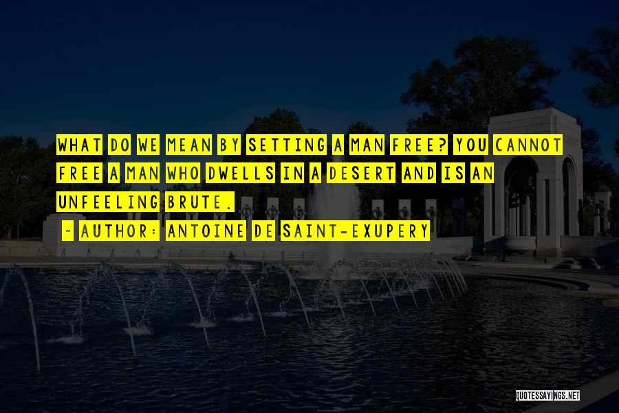Man Is Free Quotes By Antoine De Saint-Exupery