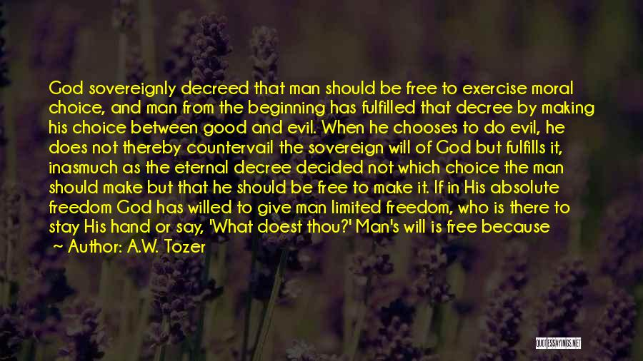 Man's Free Will Quotes By A.W. Tozer
