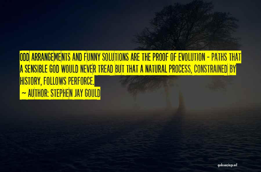 Many Paths To God Quotes By Stephen Jay Gould