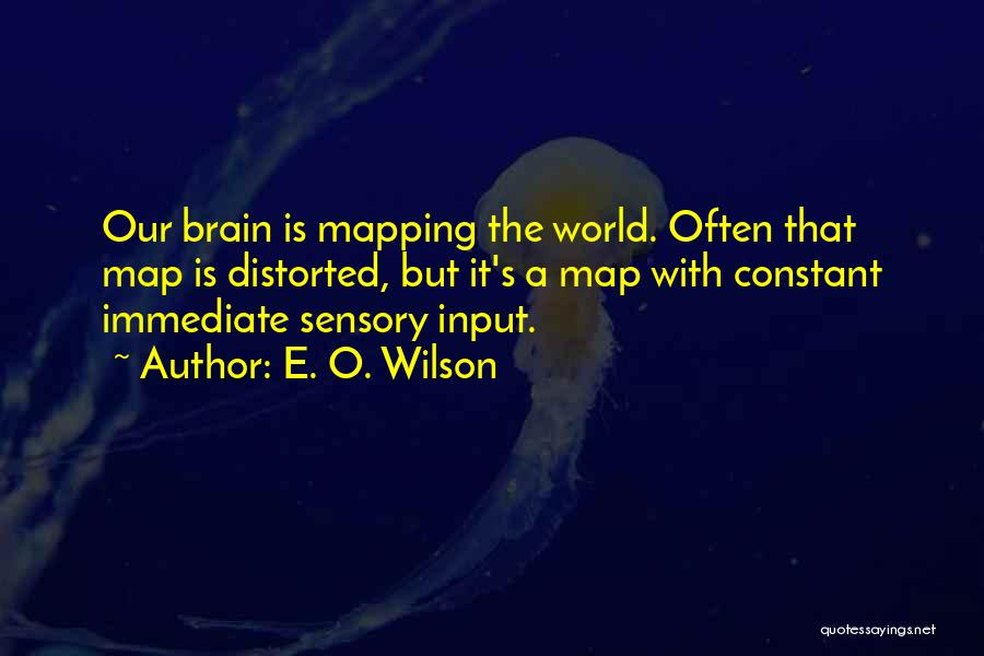 Mapping Quotes By E. O. Wilson