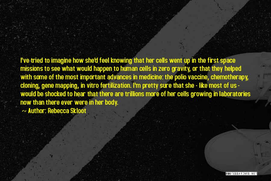 Mapping Quotes By Rebecca Skloot