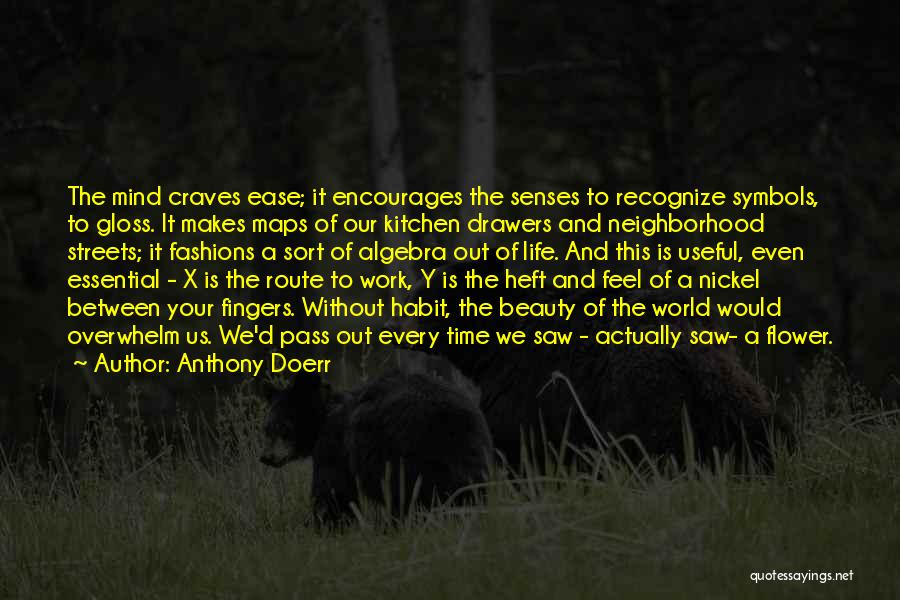 Maps And Quotes By Anthony Doerr