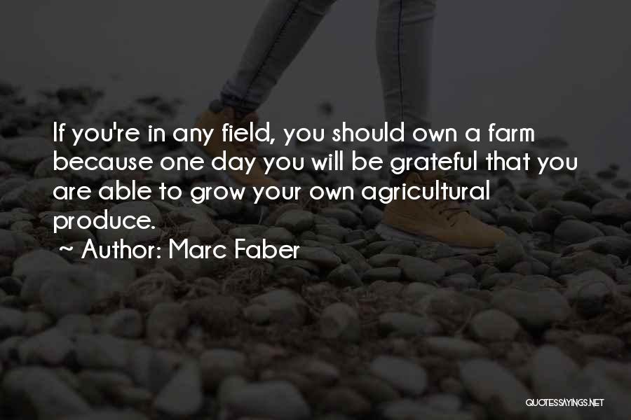 Marc Faber Quotes 1595734