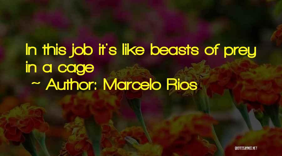 Marcelo Rios Quotes 155047