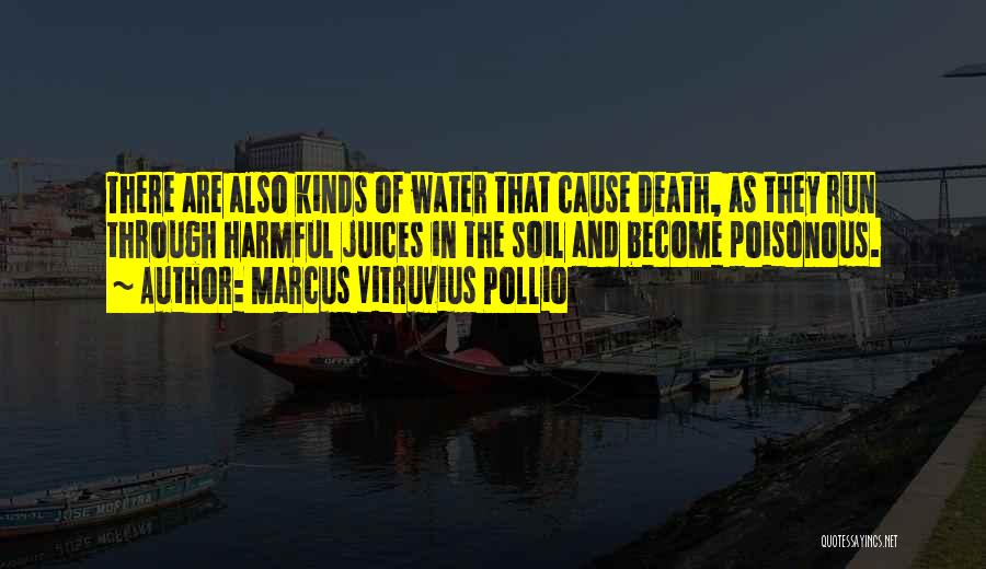 Marcus Vitruvius Pollio Quotes 1442309