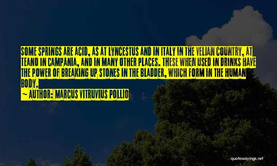 Marcus Vitruvius Pollio Quotes 1648697