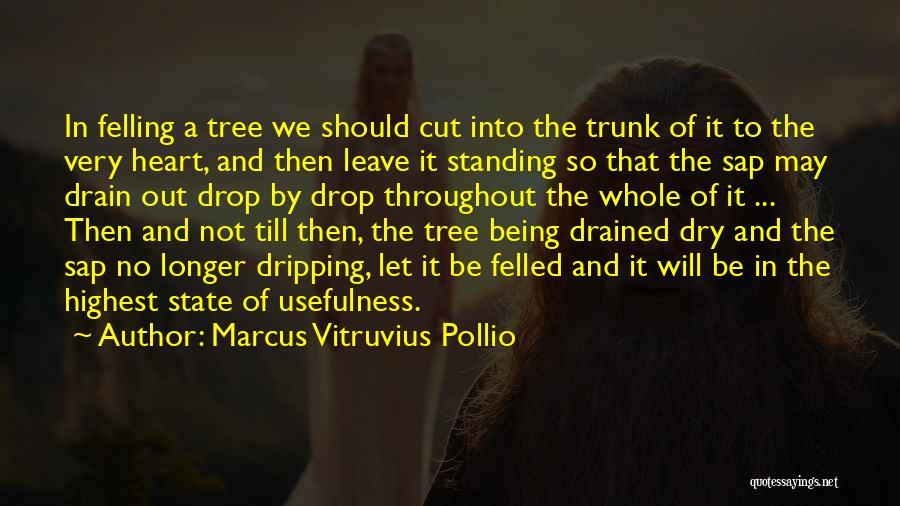 Marcus Vitruvius Pollio Quotes 2175031
