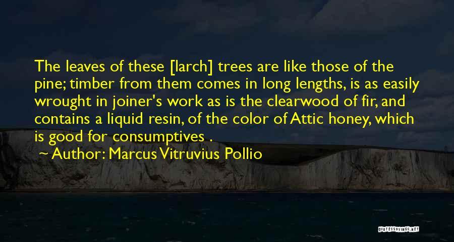 Marcus Vitruvius Pollio Quotes 511221